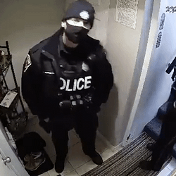 Hamilton officer caught on video lunging at woman charged with assault: Police