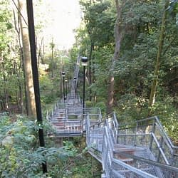 COVID-19: Hamilton's escarpment stairs to be used for 'essential travel' only as local cases surge
